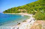 Panormos Skopelos | Sporades | Greece  Photo 10 - Photo JustGreece.com