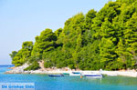 Panormos Skopelos | Sporades | Greece  Photo 13 - Photo JustGreece.com