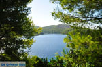 Panormos Skopelos | Sporades | Greece  Photo 16 - Photo JustGreece.com