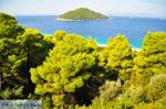 JustGreece.com Milia | Skopelos Sporades | Greece  Photo 3 - Foto van JustGreece.com