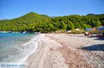 JustGreece.com Milia | Skopelos Sporades | Greece  Photo 11 - Foto van JustGreece.com