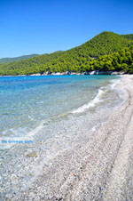 Milia | Skopelos Sporades | Greece  Photo 14 - Photo JustGreece.com