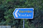 Kastani | Skopelos Sporades | Greece  Photo 1 - Photo JustGreece.com