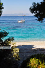 Kastani | Skopelos Sporades | Greece  Photo 2 - Photo JustGreece.com
