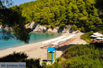 JustGreece.com Kastani | Skopelos Sporades | Greece  Photo 4 - Foto van JustGreece.com