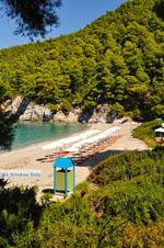 Kastani | Skopelos Sporades | Greece  Photo 5 - Foto van JustGreece.com