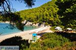 Kastani | Skopelos Sporades | Greece  Photo 6 - Photo JustGreece.com