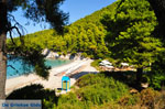 JustGreece.com Kastani | Skopelos Sporades | Greece  Photo 8 - Foto van JustGreece.com