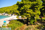Kastani | Skopelos Sporades | Greece  Photo 14 - Foto van JustGreece.com