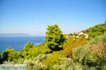 JustGreece.com Palio Klima (Old Klima) | Skopelos Sporades | Greece  Photo 4 - Foto van JustGreece.com