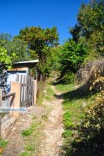 JustGreece.com Palio Klima (Old Klima) | Skopelos Sporades | Greece  Photo 16 - Foto van JustGreece.com