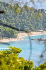 Near the Beaches Kastani and Milia | Skopelos Sporades | Greece  Photo 1 - Photo JustGreece.com