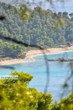 JustGreece.com Near the Beaches Kastani and Milia | Skopelos Sporades | Greece  Photo 2 - Foto van JustGreece.com