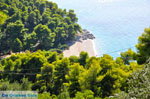 JustGreece.com Beaches Kastani and Milia |Skopelos Sporades | Greece  Photo 2 - Foto van JustGreece.com