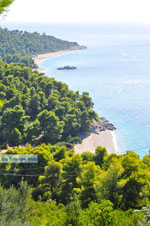 JustGreece.com Beaches Kastani and Milia |Skopelos Sporades | Greece  Photo 3 - Foto van JustGreece.com