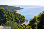 JustGreece.com Beaches Kastani and Milia |Skopelos Sporades | Greece  Photo 6 - Foto van JustGreece.com