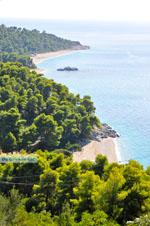 JustGreece.com Beaches Kastani and Milia |Skopelos Sporades | Greece  Photo 7 - Foto van JustGreece.com