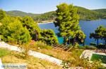 JustGreece.com Panormos Skopelos | Sporades | Greece  Photo 19 - Foto van JustGreece.com