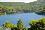 Panormos Skopelos | Sporades | Greece  Photo 20 - Photo JustGreece.com