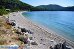 Panormos Skopelos | Sporades | Greece  Photo 23 - Photo JustGreece.com