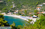 Panormos Skopelos | Sporades | Greece  Photo 26 - Photo JustGreece.com