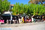 Skopelos town | Sporades | Greece  Photo 82 - Photo JustGreece.com