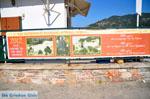 Skopelos town | Sporades | Greece  Photo 95 - Photo JustGreece.com