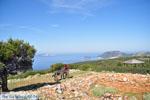 View to bay Pefkos | Agios Panteleimon | Skyros Photo 10 - Photo JustGreece.com