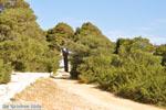 Near Agios Panteleimon Church | Skyros Greece Photo 10 - Photo JustGreece.com