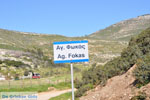Near Aghios Fokas | Skyros Greece Photo 5 - Photo JustGreece.com