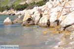 Near Aghios Fokas | Skyros Greece Photo 19 - Photo JustGreece.com