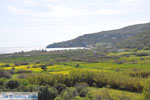 JustGreece.com Kalamitsa  | Skyros Greece Photo 1 - Foto van JustGreece.com