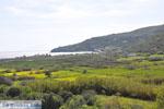 Kalamitsa  | Skyros Greece Photo 1 - Photo JustGreece.com