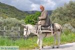 Man with Skyriaanse sandalen | Skyros Greece | Photo 1 - Photo JustGreece.com
