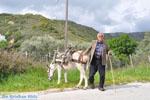 Man with Skyriaanse sandalen | Skyros Greece | Photo 2 - Photo JustGreece.com