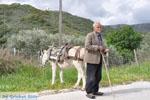 Man with Skyriaanse sandalen | Skyros Greece | Photo 3 - Photo JustGreece.com