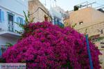 Ano Syros | Greece | Greece  Photo 40 - Photo JustGreece.com
