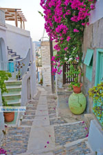 Ano Syros | Greece | Greece  Photo 42 - Photo JustGreece.com
