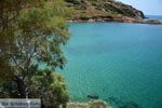 beach Lotos near Kini | Syros | Greece Photo 61 - Photo JustGreece.com