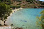beach Lotos near Kini | Syros | Greece Photo 63 - Photo JustGreece.com
