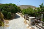 Sa Michalis   Northern Syros   Greece Photo 27 - Photo JustGreece.com