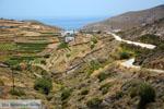 Northern Syros | Greece | Greece  Photo 63 - Photo JustGreece.com