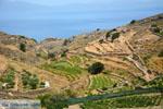 Northern Syros | Greece | Greece  Photo 65 - Photo JustGreece.com