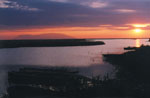 Delta Evros | Greece | Foto 1 - Photo JustGreece.com