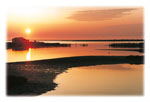 Delta Evros | Greece | Foto 5 - Photo JustGreece.com