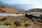 JustGreece.com  near Agios Ioannis Porto | Tinos Greece Photo 14 - Foto van JustGreece.com