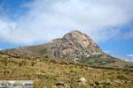 Exomvourgo Tinos | Greece | Photo 39 - Photo JustGreece.com
