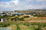Falatados near Exomvourgo Tinos | Greece | Photo 3 - Photo JustGreece.com