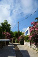 Falatados near Exomvourgo Tinos | Greece | Photo 8 - Photo JustGreece.com