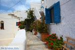 Kardiani Tinos | Greece | Photo 11 - Photo JustGreece.com